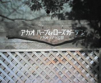 200601081032000.jpg