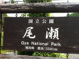 oze3.jpg